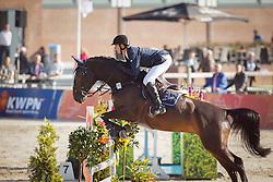 187 - Europe - Van Mierlo Maikel<br /> 5 Jarige Finale Springen<br /> KWPN Paardendagen - Ermelo 2014<br /> © Dirk Caremans