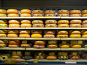 cheese wheels lined up on rows of planks in supermarket