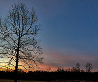 Winter Dawn Sky and Clouds in New Jersey from My Backyard. Image taken with a Leica T camera and 11-23 mm lens (ISO 100, 13 mm, f/8, 1/60 sec).