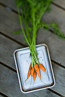 Still life of carrots.
