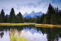 """Sunrise at Shwabacker's Landing in Grand Teton National Park<br /> <br /> For production prints or stock photos click the Purchase Print/License Photo Button in upper Right; for Fine Art """"Custom Prints"""" contact Daryl - 208-709-3250 or dh@greater-yellowstone.com"""