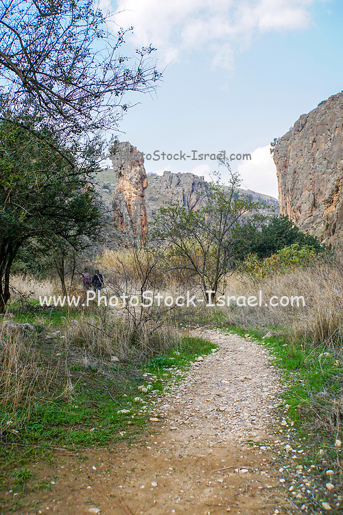 Israel, Galilee, Amud (Pillar) stream nature reserve and park The column that gives this river it's name