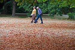 ©Licensed to London News Pictures 14/08/2020             Greenwich, UK. A couple walking. Parched grass is joined by early autumnal leaves on the ground in Greenwich Park, Greenwich, London as the heatwave comes to an end leaving a humid and cloudy day today. Photo credit: Grant Falvey/LNP