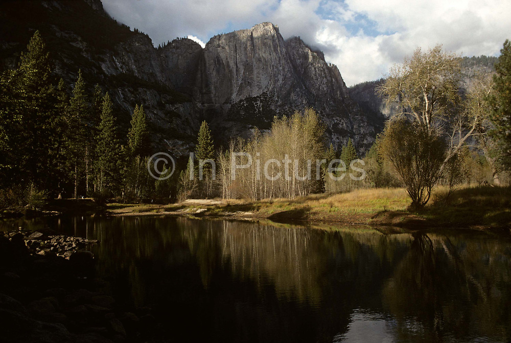 A wide landscape scene of Yosemite Valley in Yosemite National Park, California. It is summer and the various species of trees, including pine, thrive in this wilderness, protected under US conservation laws. The valley is about 8 miles (13 km) long and up to a mile deep, surrounded by high granite summits such as Half Dome, El Capitan, and Cloud's Rest, and densely forested with pines. The entire park covers an area of 761,268 acres (3,080.74 km2) and reaches across the western slopes of the Sierra Nevada mountain chain. Over 3.7 million people visit Yosemite each year: most spend their time in the seven square miles (18 km2) of Yosemite Valley.