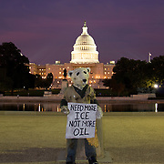 This Greenpeace street art created by Mark Jenkins shows a polar bear protesting oil drilling in the Arctic while standing in front of the U.S. Capitol building in Washington, DC