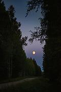 Almost full moon (soon to be harvest moon) over forests and lone road near border of Estonia, somehow near Aloja, Northern Vidzeme, Latvia Ⓒ Davis Ulands   davisulands.com