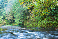 Trask River, Tillamook, Oregon.