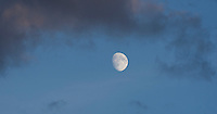 Moon Rise ©2015 Karen Bobotas Photographer