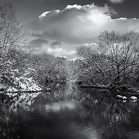 """""""Afternoon in Shades of Gray"""" <br /> <br /> A Wonderful winter snow scene in black and white!"""