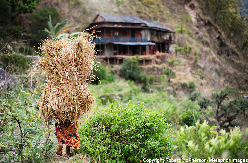 Barefoot and in traditional costume Maiya the mother of the Khadka family works 12 hours straight in the heat, with hardly any breaks. When the father in the house comes home from work, the family eat a small meal together and go to bed as the light dissapears around 7.30pm. Nepal is the second richest country in water resource but they still meet challenges with building hydropower. Everyday electric current goes off for hours and people are compelled to live in the darkness. Norway is one of the countries who have earned a lot of money on building hydropower in Nepal, but the country itself still remains poor and undeveloped. After the earthquakes that struck Nepal in 2015 the situation is even worse.