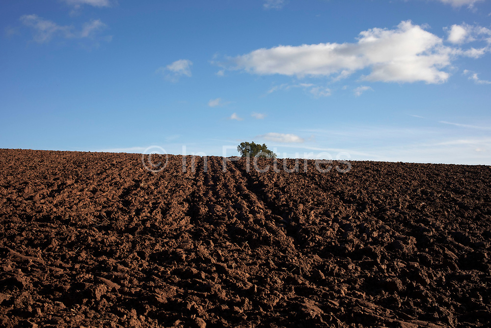 Agricultural landscape of ploughed fields in Shrawley, United Kingdom.