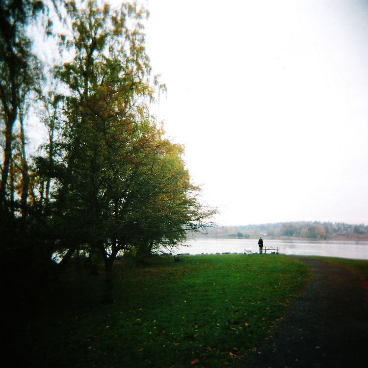 Lake Washington Arboretum Waterfront Trail No.2
