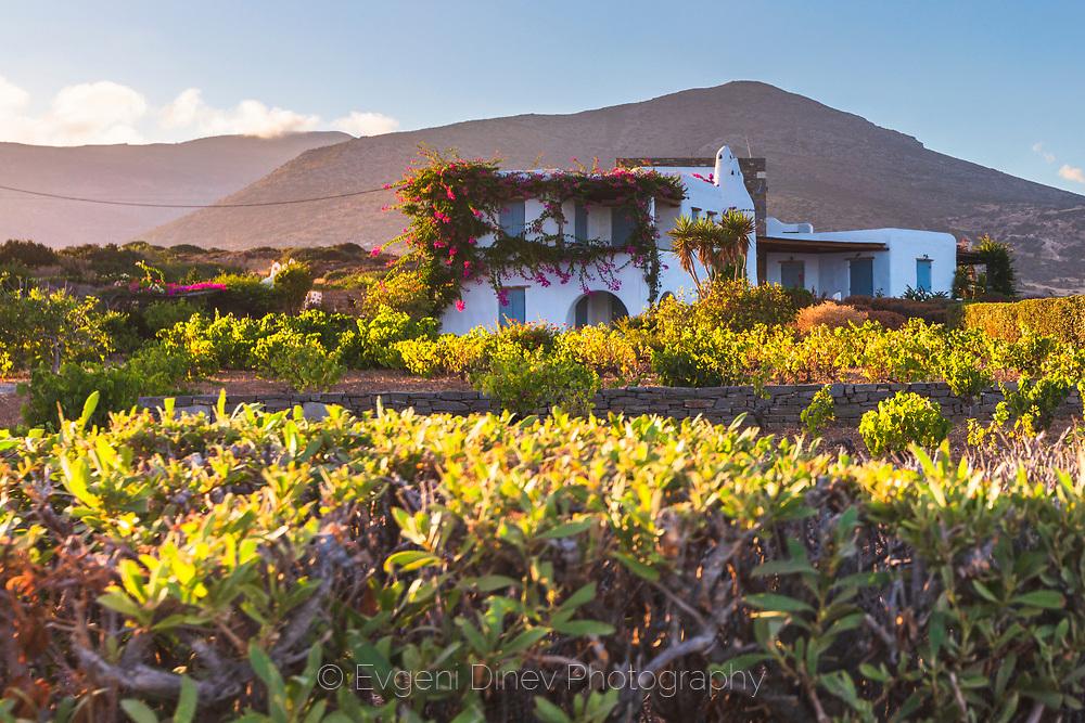 Pirgaki, Paros, Greece - July 2021: Traditional Paros Villa