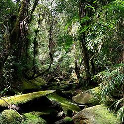 """""""Córrego (rio) fotografado em Pedra Azul, Espírito Santo -  Sudeste do Brasil. Bioma Mata Atlântica. Registro feito em 2014.<br /> <br /> <br /> <br /> ENGLISH: Stream photographed in Pedra Azul, Espírito Santo - Southeast of Brazil. Atlantic Forest Biome. Picture made in 2014."""""""
