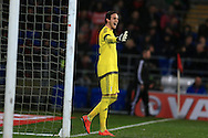 Daniel Ward, the Wales goalkeeper looks on .Wales v Northern Ireland, International football friendly match at the Cardiff City Stadium in Cardiff, South Wales on Thursday 24th March 2016. The teams are preparing for this summer's Euro 2016 tournament.     pic by  Andrew Orchard, Andrew Orchard sports photography.