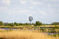 30-04-2020: Nijetrijne, Weststellingwerf - Bemalingsmolen bij natuurgebied Rottige Meente