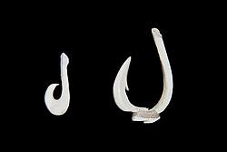 historic Hawaii, USA, Pacific Oceanan fish hooks or fishhooks made with animal bones, Hawaii, USA, Pacific Ocean