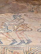 The Amazons participating in the festivities Mosaic (detail) in the Nile House at Zippori National Park The city of Zippori (Sepphoris) A Roman Byzantine period city with an abundance of mosaics, Lower Galilee, Israel