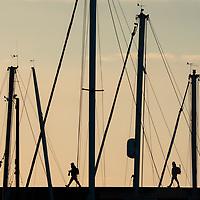 sea wall walking, sunrise over the marina,