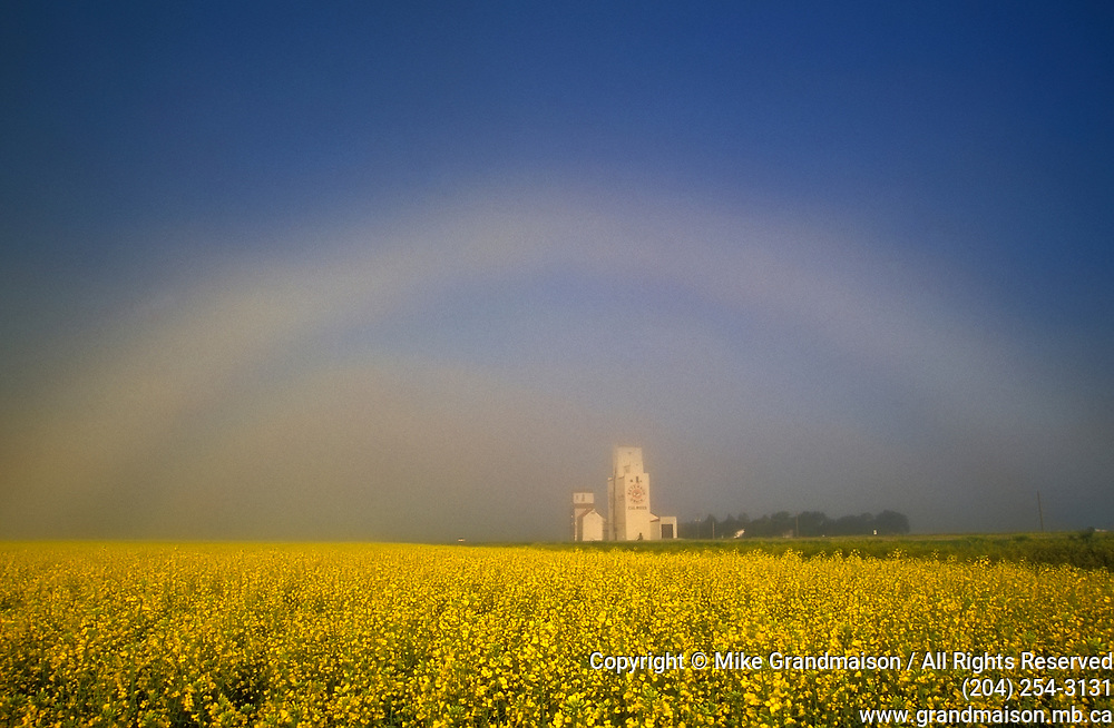 fogbow and grain elevator<br />Culross<br />Manitoba<br />Canada