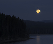 The moon sets over Yellowstone Lake just before Sunrise. Available in a Limited Edition Print.