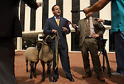 """TALLAHASSEE, FL. 3/3/04-Scott Maddox, chairman of the Florida Democratic Party, is joined by two sheep he said were named """"Bo"""" and """"Peep"""" during a news conference where he criticized Republican lawmakers as sheep who blindly follow their leader, Wednesday at the Capitol in Tallahassee.  Maddox's talk was in response to comments made recently by House Speaker Johnnie Byrd, R-Plant City, when he compared legislators to sheep. COLIN HACKLEY PHOTO"""