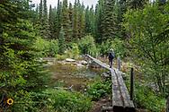 Hking footbridge over Quartz Creek in Glacier National Park, Montana, USA