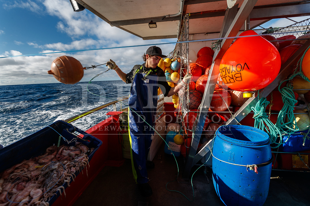 They had started paying out the line the previous afternoon, steaming ahead at full speed while sending mile after mile of three-millimetre-wide monofilament out behind them into the Tasman. Every 11 seconds or so, the crew clipped a snood—a 14-metre-long length of nylon—onto the main line. On the end of the snood dangled an arrow squid the size of a man's hand, and a 60-gram lead weight.<br /> By the time they were done, it was dark, and the main line stretched for about 30 nautical miles, invisible beneath the surface of the water. In the far distance, the Southern Alps glowed white above the West Coast.<br /> Shot on assignment for New Zealand Geographic Issue: 170 July August 2021.<br /> Read the Feature: https://www.nzgeo.com/stories/billion-dollar-fish/<br /> Photograph Richard Robinson © 2021.<br /> Rights managed image. No Reproduction without prior written permission.