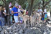 Children's holiday activity a Patting Zoo Children feeding Ibex