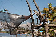 Traditional fishing in the backwaters on 17th November 2009 near Alappuzha aka Alleppey, Kerela, India. The region is known for Chinese fishing nets Cheena vala which are a type of stationary lift, fixed land installations, the more formal name for such nets is shore operated lift nets.