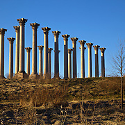 These 22 sandstone Corinthian columns that once supported the east portico of the U.S. Capitol are now on display at the U.S. National Arboretum in DC. Seemingly in the middle of nowhere, they create quite a bizarre, eerie sight.