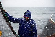 Fishermen working during the sardine fish. Sardine means Portugal more than codfish. For the Portuguese people, sardine fish it is not only one of the main national product exported it is tradition; for at least half of the year the Portuguese eat sardine at least once a week, the main dish of the most popular party (party of Saint John) is sardine. The limitation introduced by the European community on the fishing of the bluefish (sardine below to this category) and the economical crisis in Portugal threat this product.