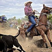 Opotiki Rodeo