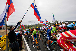 TRATNIK Jan of Slovenia and ROGLIC Primoz of Slovenia compete during Men Elite Road Race at UCI Road World Championship 2020, on September 27, 2020 in Imola, Italy. Photo by Vid Ponikvar / Sportida