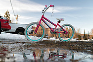 A pink bicycle during spring melt, Nenana