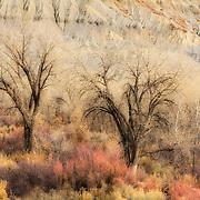 Southeast Utah
