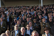 THIRD  RACE, Cheltenham races,  Ladies Day, Wednesday 15 March 2017