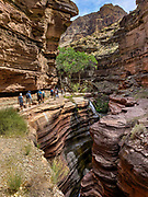 Deer Creek slot canyon in Grand Canyon National Park, Arizona, USA. Starting at River Mile 134.5, a portion of our party disembarked our rafts for a hike one way up beautiful Tapeats Creek Trail to the wondrous Thunder Spring and River, across remote Surprise Valley Trail, then down Deer Creek Trail to meet others of our group at The Patio and Deer Creek Falls at River Mile 136.9. This scenic one-way traverse was 8 miles with 2300 feet gain (measured by my smartphone GPS app). Day 10 of 16 days rafting 226 miles down the Colorado River in Grand Canyon National Park.