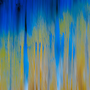 This was about a .5 second exposure of aspen trees and blue sky. The image was processed inverted, so lights became darks, and yellows became blues. After years of trying different techniques and hundreds of images, a select few actual end up coming out how I want. This one when printed looks like the colors have spilled and splattered like an abstract painting.