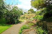 Path through rock garden plants, Kew Gardens, Royal Botanic Gardens, London, England, UK