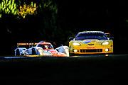 September 30-October 1, 2011: Petit Le Mans at Road Atlanta. 4 Jan Magnussen, Richard Westbrook, Oliver Gavin,Chevrolet Corvette C6 ZR1, Corvette Racing