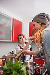 Young couple cooking in the kitchen, Munich, Bavaria, Germany