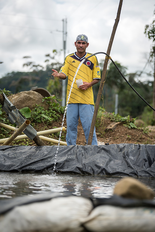 """16 November 2018, San José de León, Mutatá, Antioquia, Colombia: """"The difference is in our everyday life,"""" says Joni Pertuz as he feeds a school of 300 Tilapia fish just outside his house. """"To not have to get up at six in the morning and check the map to see where the enemy is. Now things have changed. We get up in the morning to look after our kids, to check on the animals that we have. But what has not changed is our sense of collective. We stay united."""" Joni is one of some 10 families who have their own stocks of fish, apart from the community collective's larger schools of farmed fish. Following the 2016 peace treaty between FARC and the Colombian government, a group of ex-combatant families have purchased and now cultivate 36 hectares of land in the territory of San José de León, municipality of Mutatá in Antioquia, Colombia. A group of 27 families first purchased the lot of land in San José de León, moving in from nearby Córdoba to settle alongside the 50-or-so families of farmers already living in the area. Today, 50 ex-combatant families live in the emerging community, which hosts a small restaurant, various committees for community organization and development, and which cultivates the land through agriculture, poultry and fish farming. Though the community has come a long way, many challenges remain on the way towards peace and reconciliation. The two-year-old community, which does not yet have a name of its own, is located in the territory of San José de León in Urabá, northwest Colombia, a strategically important corridor for trade into Central America, with resulting drug trafficking and arms trade still keeping armed groups active in the area. Many ex-combatants face trauma and insecurity, and a lack of fulfilment by the Colombian government in transition of land ownership to FARC members makes the situation delicate. Through the project De la Guerra a la Paz ('From War to Peace'), the Evangelical Lutheran Church of Colombia acc"""
