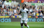 Wlifried Bony of Swansea City can't hide his frustration after a near miss on goal in the first half.<br /> Barclays Premier league match, Swansea city v Southampton at the Liberty stadium in Swansea, South Wales on Saturday 3rd May 2014.<br /> pic by Phil Rees, Andrew Orchard sports photography.