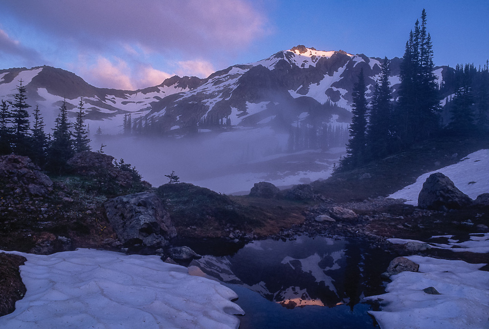 Upper Royal Basin, view of Mount Fricaba, evening light, Olympic National Park, Washington, USA