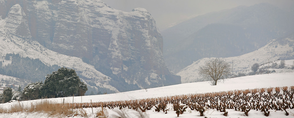 Matute. La Rioja ©Daniel Acevedo / PILAR REVILLA ©Daniel Acevedo / PILAR REVILLA