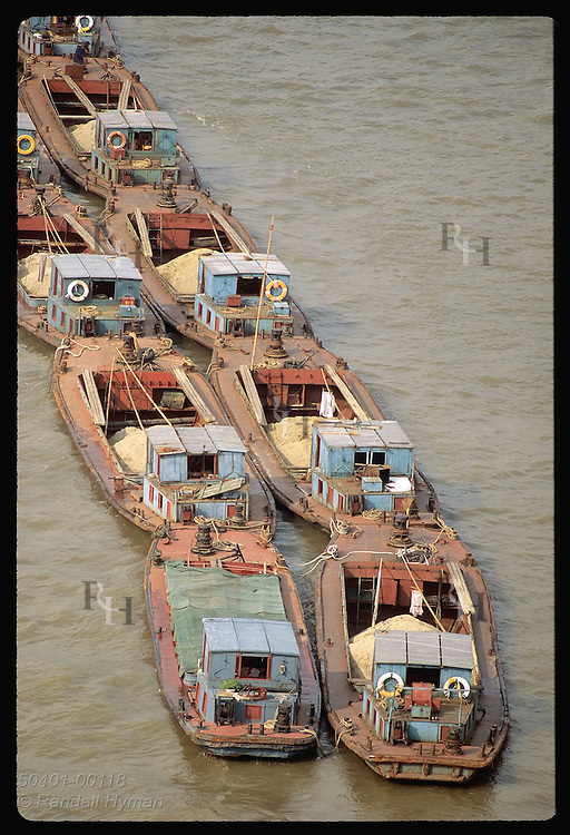 Caravan of barges tied in double line carries sand down Huangpu River to fast-growing Shanghai. China