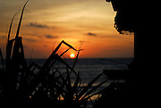 Small shrine and pandanus palm leaves silhouetted against setting sun, Jimbaran Bay, Bali, Indonesia. Jimbaran Bay was the location of the second Bali terrorist bombing on October 2, 2005.