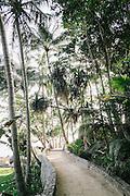 Jungle path to the public pool