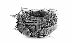 Descriptive catalogue of the nests & eggs of birds found breeding in Australia and Tasmania /<br />Sydney :F.W. White, general printer,1889.<br />https://biodiversitylibrary.org/page/57793279